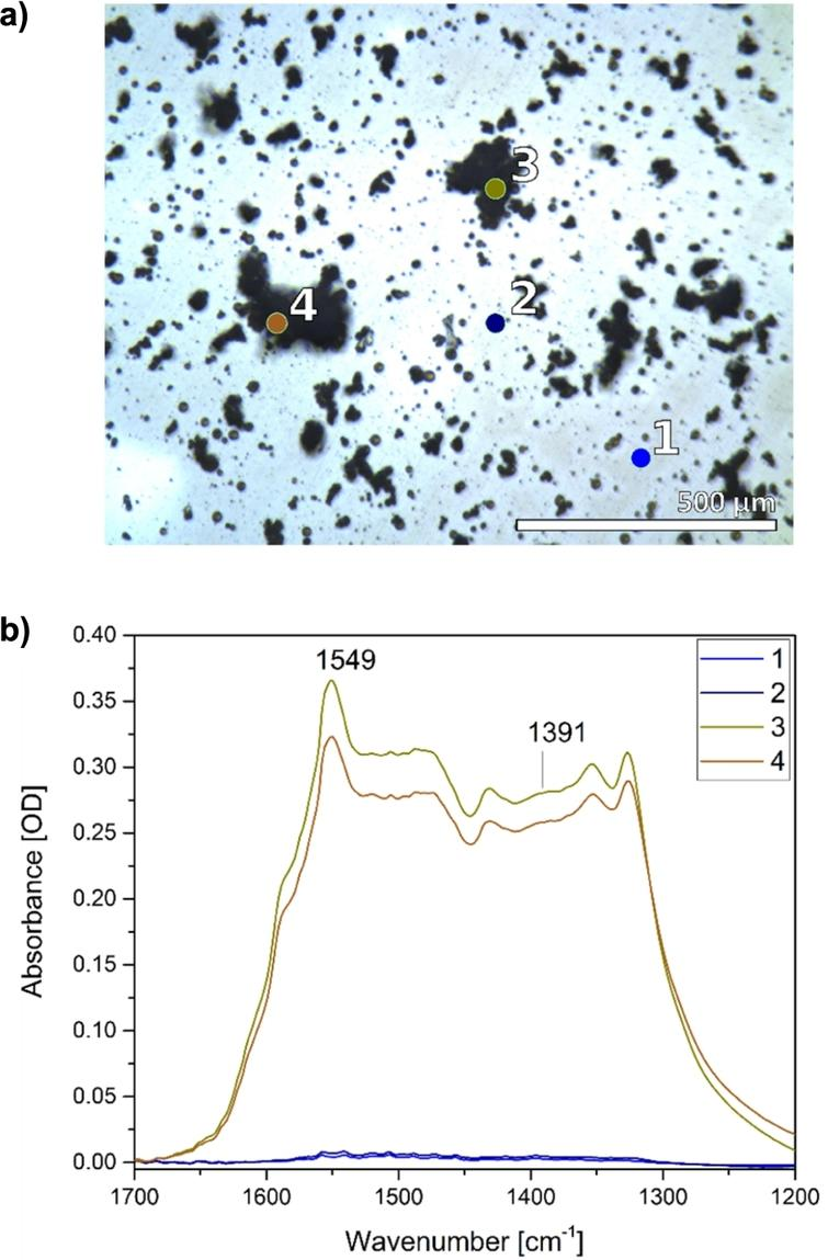 Chemical imaging of the ZnO thin film with FTIR microscopy. a) Visible light image of a ZnO thin film and selected areas (1–4). b) Corresponding infrared spectra reveal the heterogeneity of the ZnO film with low particle density (1, 2) and areas containing particle-aggregates (3, 4).