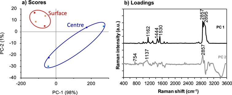 PCA scores (a) and loadings plots (b) for spectra in the collected region 3600–400 cm−1 for Camembert cheese surface (two replicate samples shown in red and orange) and centre (two replicate samples shown in dark blue and light blue) sections. Two spectra were used to represent each sample based on the True Component Analysis. The colour version is available online.