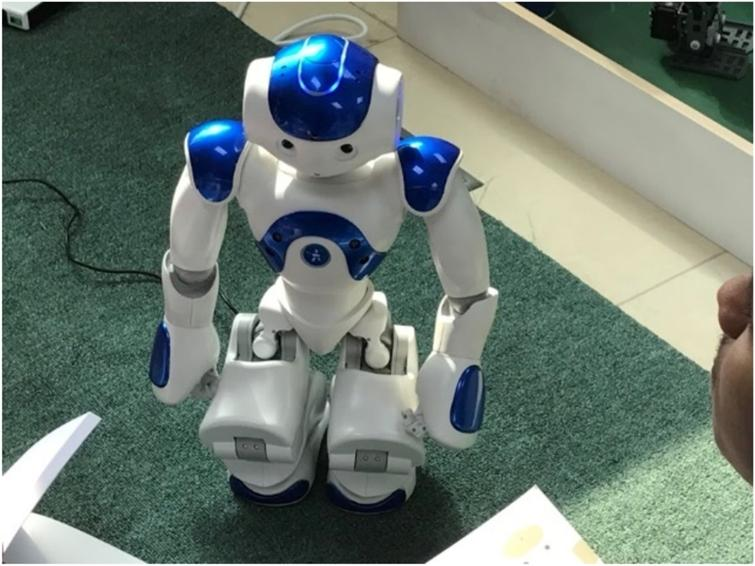 Initial mode of NAO Robot in seated position.