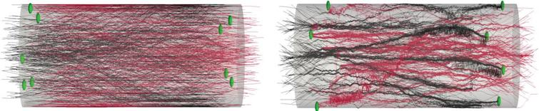 Growth pattern and synapses examples. Illustration of synaptic formation close to the cells aggregate. The spheres indicate the synapses location. We consider that a synapse is formed when 2 fibers are closer than a threshold distance of 0.5 μm. Synapses occur close to the aggregate (within 100 μm). The connectivity information is extracted for the spiking network simulation. (A) The output image of the model: synaptic formation in bidirectional micro-TENNs without axonal bundles. (B) The output image of the model: synaptic formation in bidirectional micro-TENNs with axonal bundles.